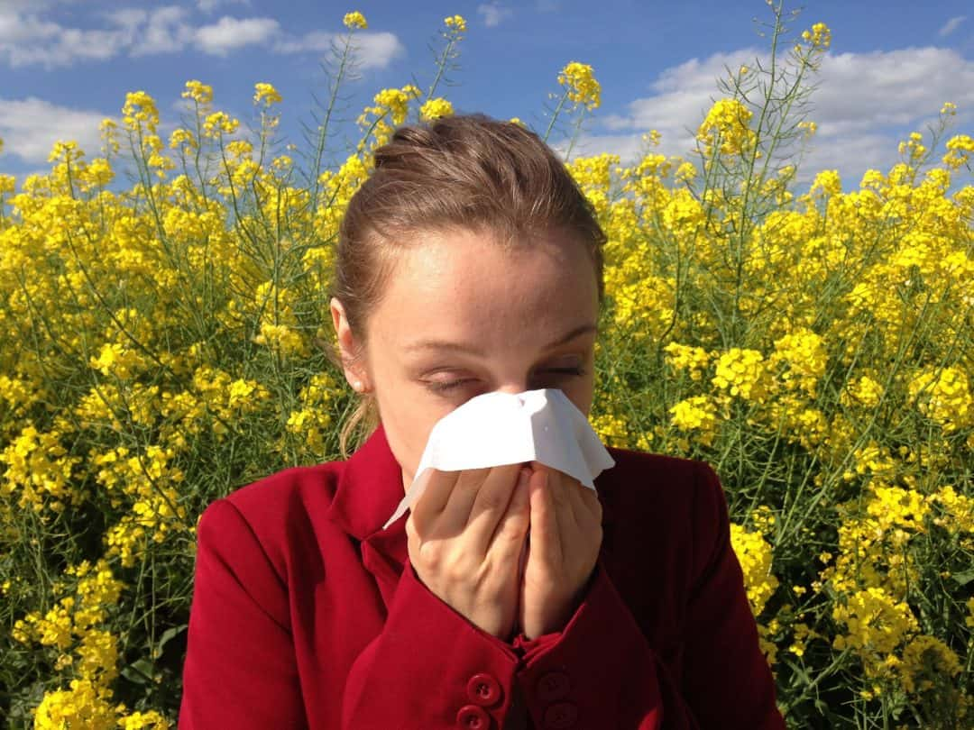 comment soigner une allergie